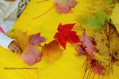 leaves-autumn-kids
