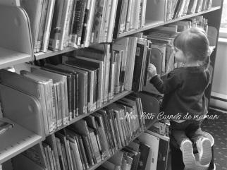 mespetitscarnetsdemaman-bibliotheque